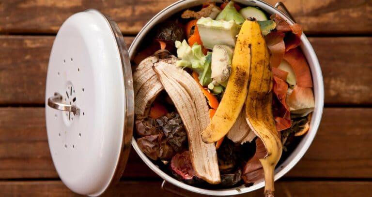 Zéro déchet : installer un compost dans un appartement